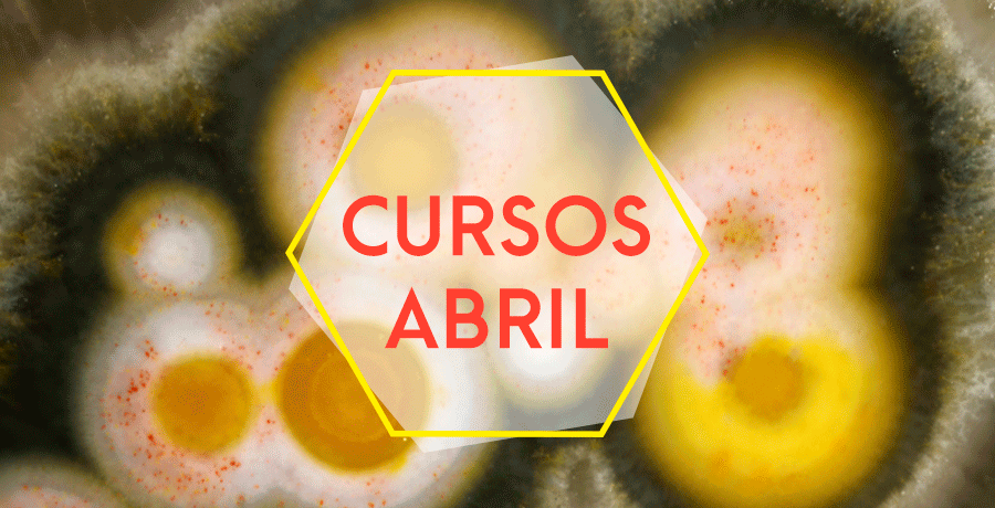 CURSOS DE ABRIL 2019